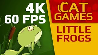 Download CAT GAMES - 🐸 LITTLE FROGS (VIDEO FOR CATS TO WATCH) 4K 60FPS 1 HOUR Video
