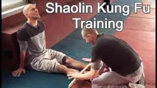 Download 9 Months of Kung Fu Training in China - Wang Xing Long Kung Fu School Video