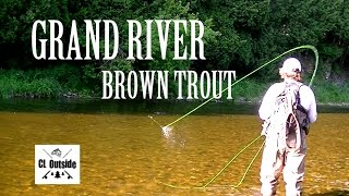 Download Grand River Brown Trout Video