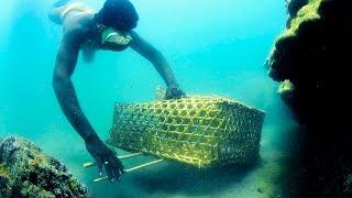 Download Fishing Palk Bay Video
