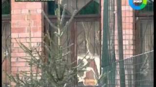 Download Освобождение Касперского. Эфир 1.05.2011 Video