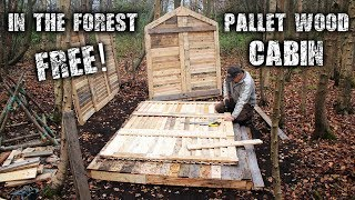 Download Off Grid Pallet Wood Cabin Build in the Forest for Free - Wood Floor, Wall & Frame Structure Video