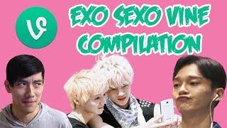 Download EXO SEXO VINE COMPILATION REACTION | EXO VINES COMPILATION REACTION (EXO TEMPO HYPE!!) Video