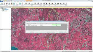 Download Subsetting an Image with a Shapefile Video