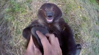 Download GoPro: Man and Grizzly Bear - Adventures with Bella Video