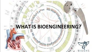 Download What is Bioengineering? | BioEHS Video
