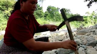 Download Primitive Technology - find shoot big fish - cook eating delicious 55 Video
