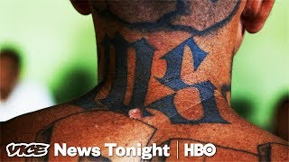 Download MS-13's Active Members Are Laughing At Trump's Crackdown (HBO) Video