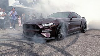 Download Ford Mustang 5.0 V8 Royal Crimson GT - BRUTAL Revs, Burnout, Accelerations! Video