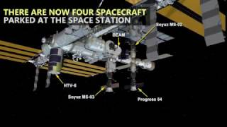Download Japan's HTV-6 Makes Four Spacecraft Parked at the Station Video