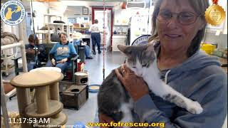 Download Jay Money heading out to his new home . 10/15/19 Friends of Felines Rescue Center (FFRC) Video