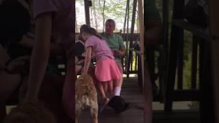 Download Grandpa - tickle monster Video