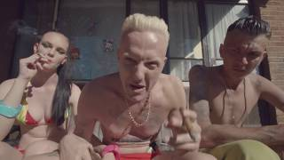 Download DIE ANTWOORD - BABY'S ON FIRE Video