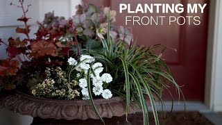 Download Planting My Front Pots Video