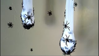 Download How To Make Creepy Spider Nest Halloween Decoration! Video