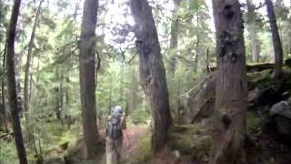 Download Grizzly Bear Encounter Video