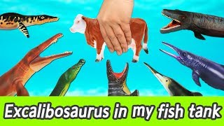 Download [EN] Let's raise Excalibosaurus in my fish tank! learn animals name, Collecta figureㅣCoCosToy Video