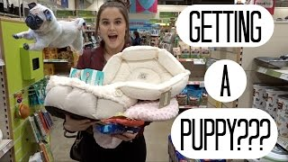 Download ARE WE GETTING A PUPPY???? Video