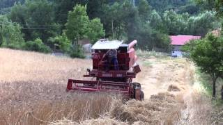 Download Trebbiatura Grano 2015 con Laverda M92AL Video