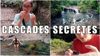 Download Aventure, forêt amazonienne et cascades cachées - GUYANE #2 Video
