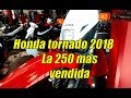 Download Honda Tornado 2018 - la 250 mas vendida de Argentina Video