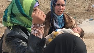 Download Refugees flee Mosul as battle for city rages on Video