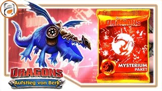 Download Dragons Aufstieg von Berk | DRACHENREITER MYSTERIUM PAKET & alle Drachen [HD+] #909 Video