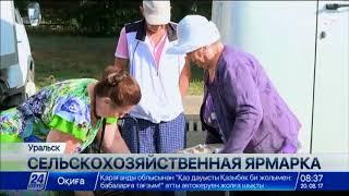 Download Продукция местных фермеров в Уральске продается по сниженным ценам Video