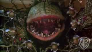 Download Little Shop of Horrors - Trailer 62 Video