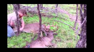 Download Bushlan Camo Rescues a Trophy Buck with Locked Antlers Video