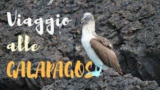 Download Viaggio alle Isole Galapagos Video