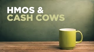 Download HMOs & CASH COWS: PORTFOLIO STRATEGIC ANALYSIS Video