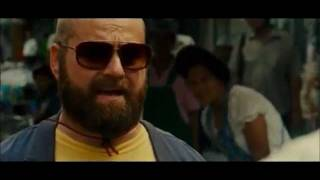 Download The Hangover Alans Funniest Moments Video