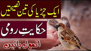 Best Collection of Islamic Quotes in Urdu Free Download Video MP4