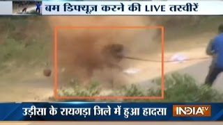 Download Sniffer Dog Injured In An IED Blast In Raigarh Video