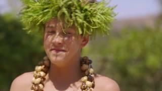 Download Surfing Safari Video