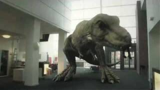 Download T. Rex In The Atrium (2010) Video