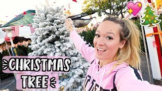 Download Shopping for Christmas Trees! Vlogmas Day 5!! Video
