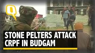 Download The Quint: Budgam Encounter: 'CRPF & Civilians Must Talk' Says J&K CM Mufti Video