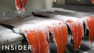 Download How Smoked Salmon Is Made Video