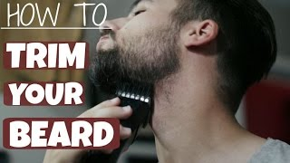 Download How To Trim and Shape Your Beard | TheGentlemansCove Video