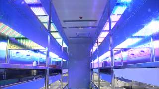 Download LED SUN LIGHT WALK IN GROWTH CHAMBER Video