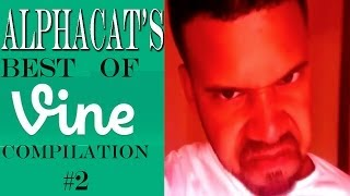 Download Alphacat's BEST OF VINE COMPILATION #2 Video