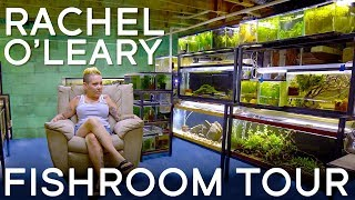 Download Touring Rachel O'Leary's Fishroom in 4K Video