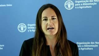Download Estrategia Regional para la Gestión del Riesgo de Desastres en América Latina y el Caribe Video
