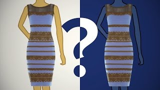 Download The Color Of The Dress According To Science Video