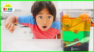 Download Sink or Float Density Tower Science Experiments for Kids!!! Video