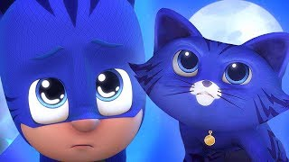 Download PJ Masks Season 2 😺Catboy turns into a Real Cat | PJ Masks 2019 ⭐️HD 30 MINS | PJ Masks Official Video