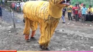 Download AKSI TARUNGAN BUROK CINTA NADA BUDAYA Video