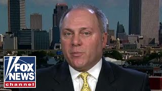 Download Scalise: Democrats' call for violence a threat to our democracy Video